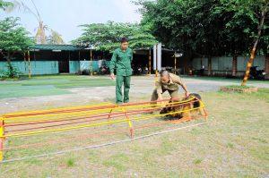 Trường huấn luyện chó cảnh, chó nghiệp vụ uy tín Trung Đức